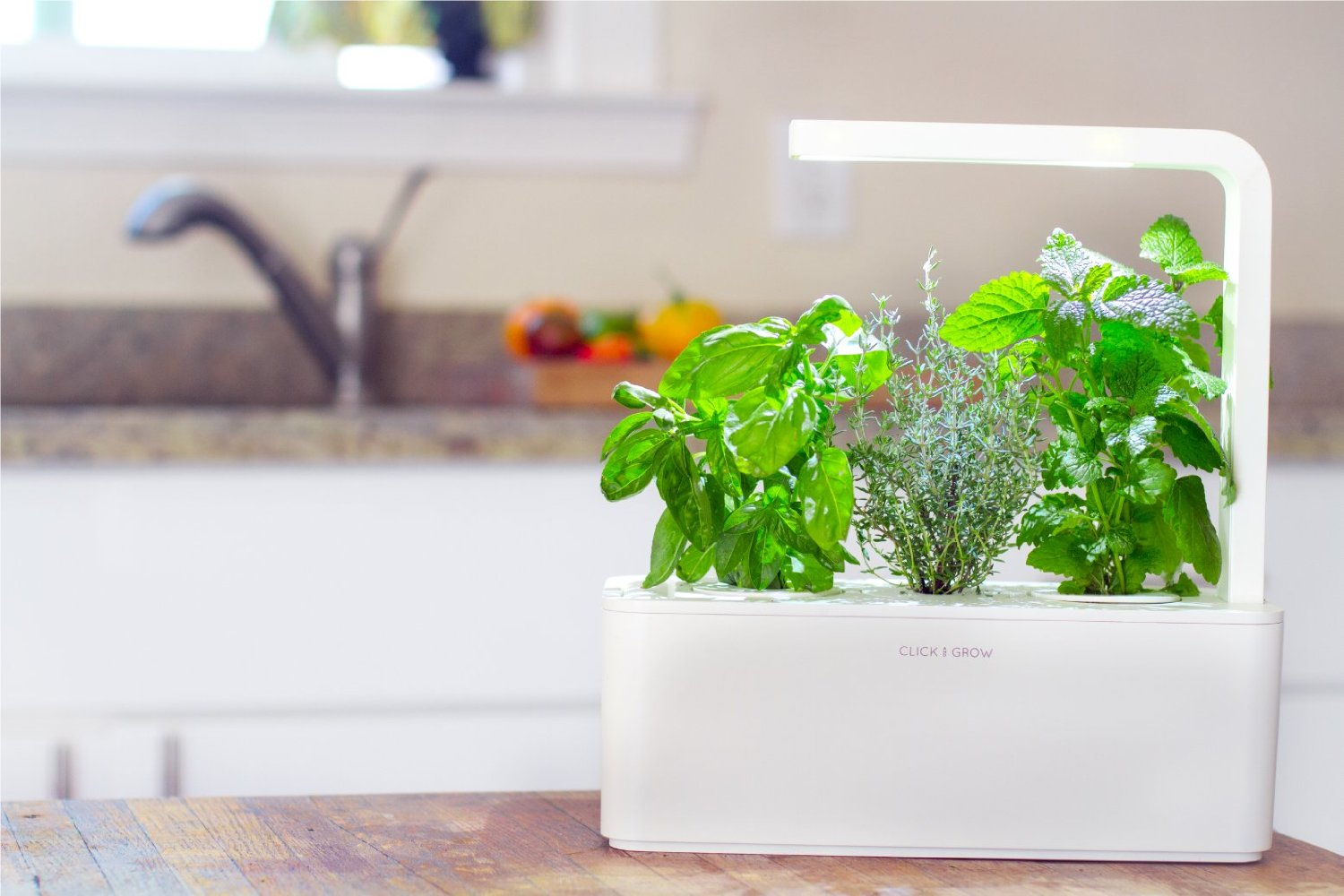 Click & Grow Smart Herb Garden Indoor