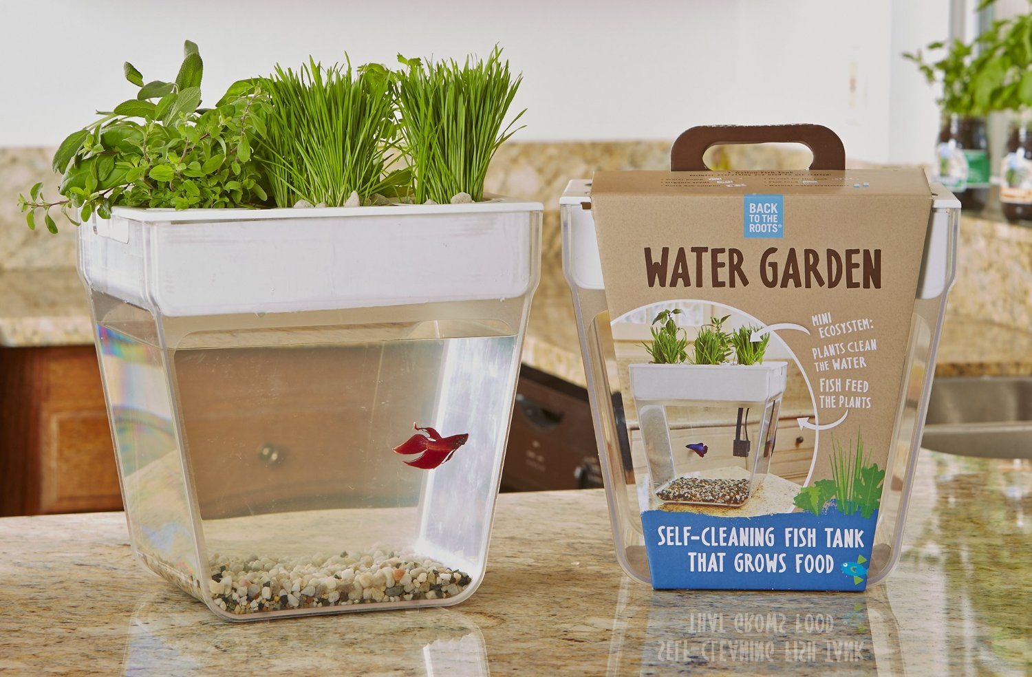 Fish Tank Herb Garden In One Kitchen Gadget Box