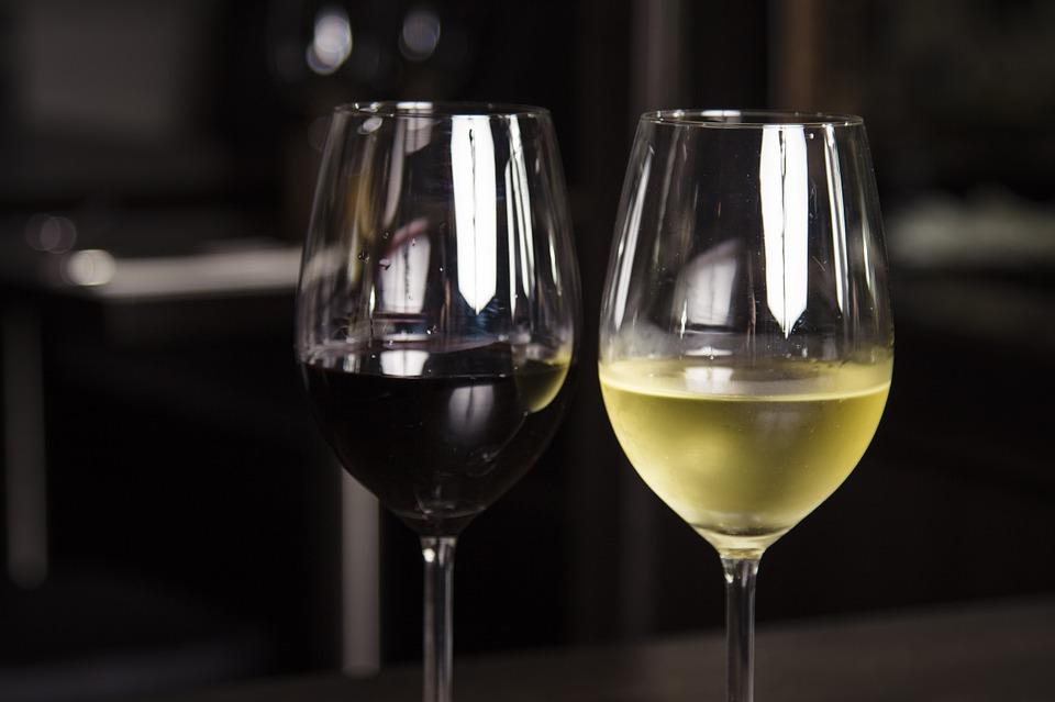 Best 5 Wine Fridge Coolers