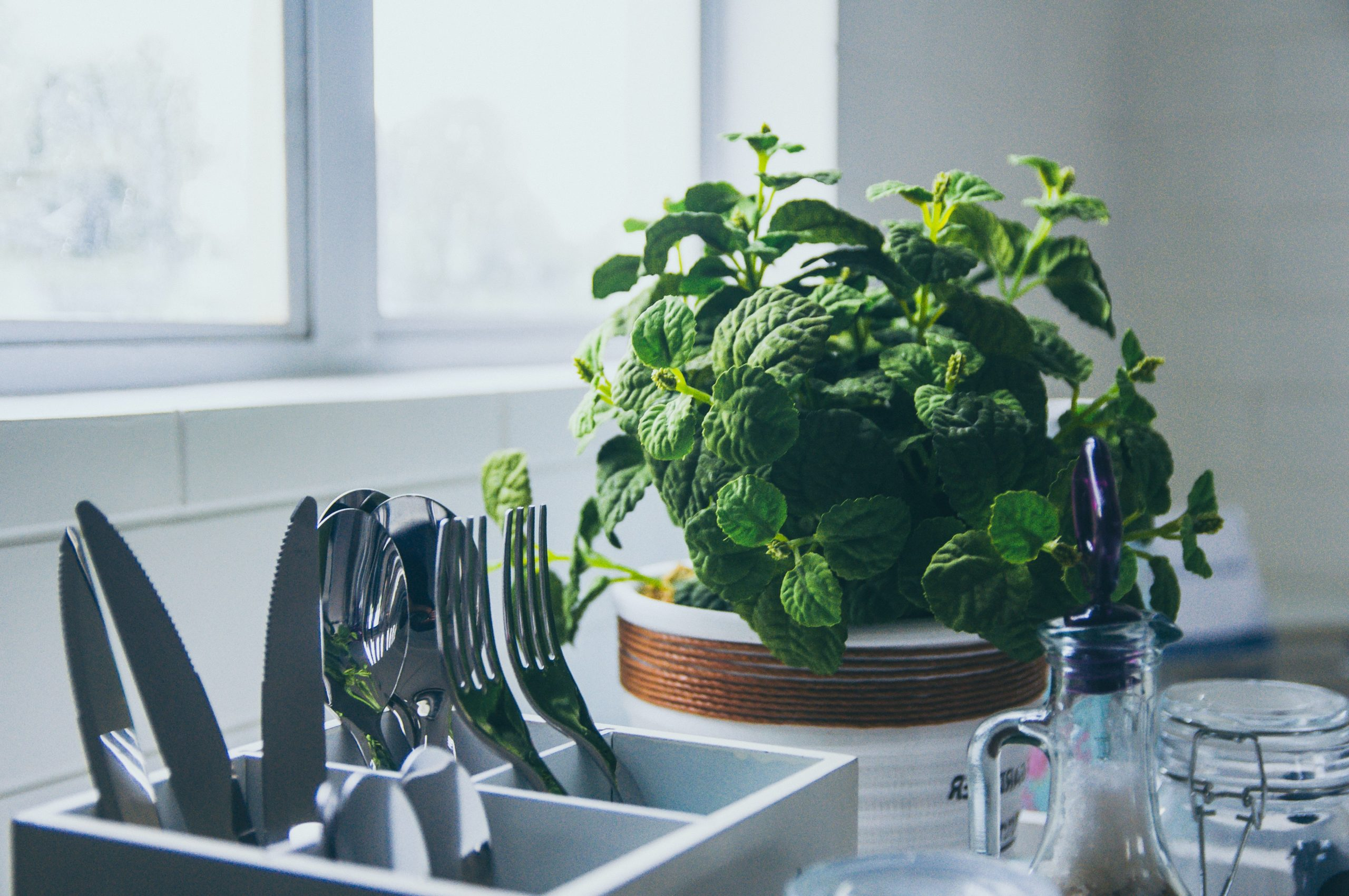 We take a look at the best herb gardens and kits to keep in your home and grow fresh herbs ready for cooking.